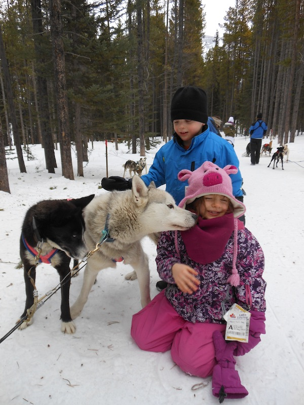 Howling Dog Tours in Canmore, AB