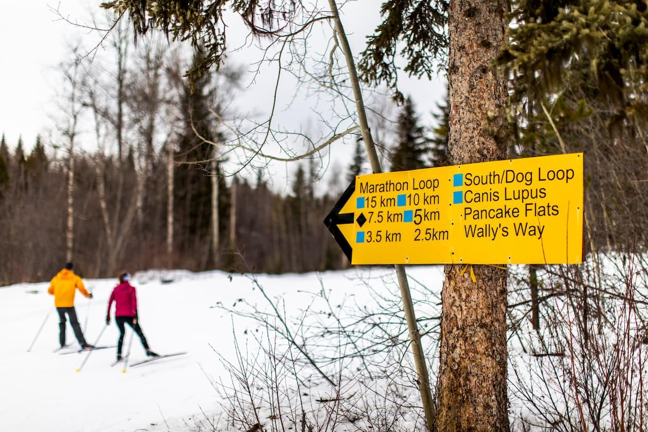 Quesnel trails winter