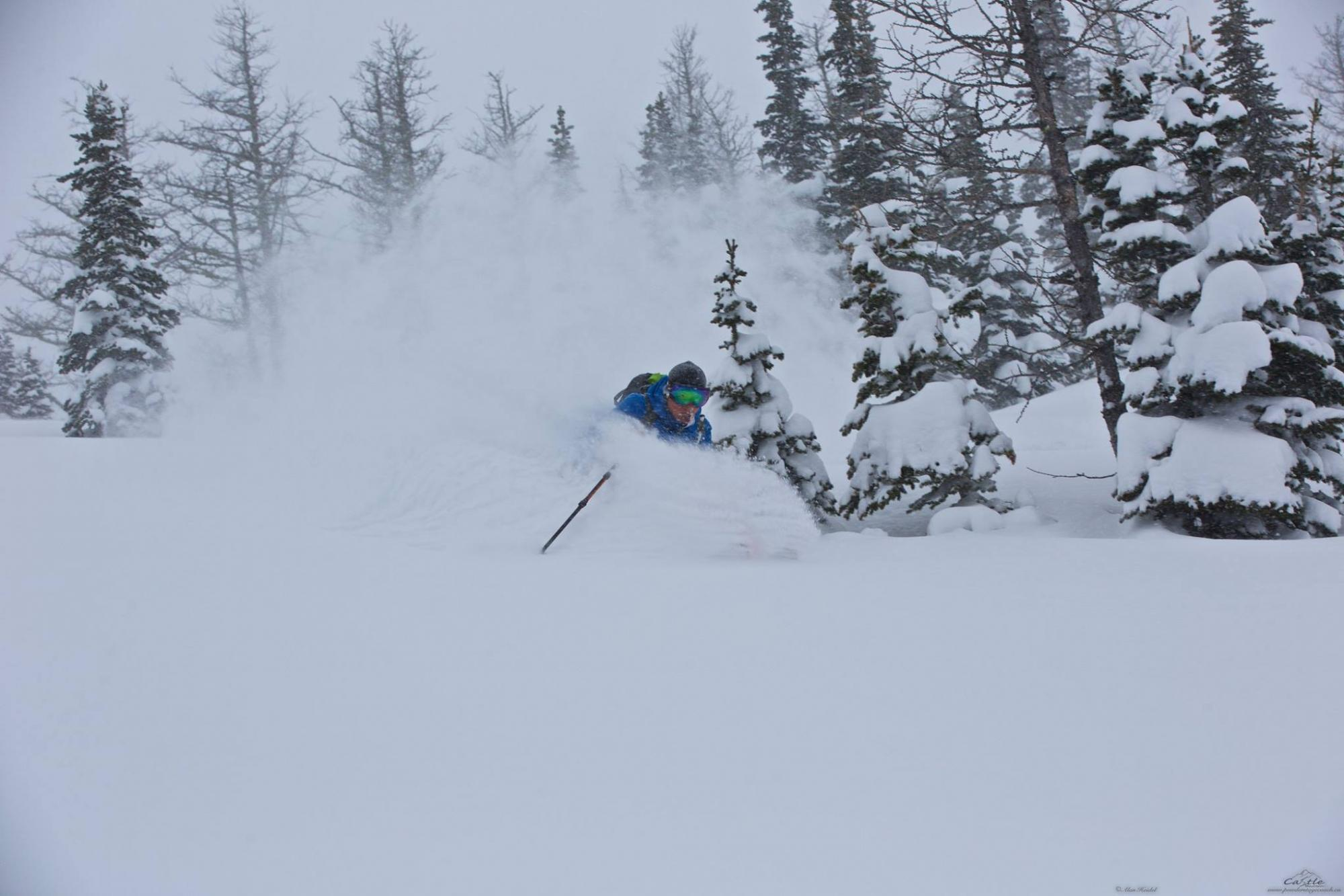 Powder at Castle Mountain