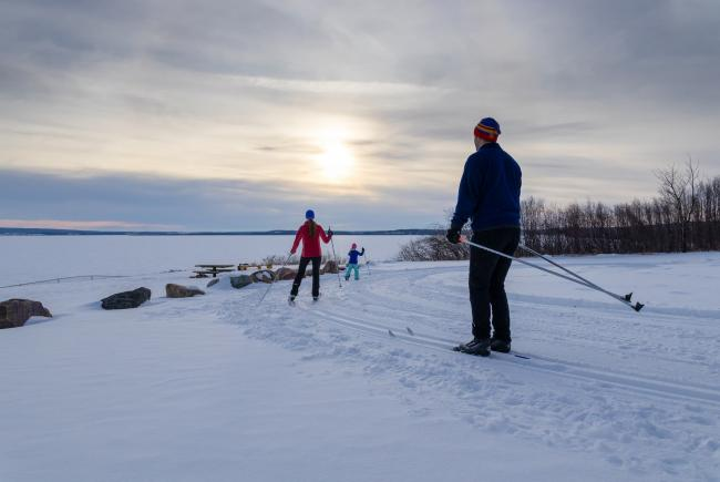 Bonnyville AB #SkiNorthAB Marion Lake cross country skiing