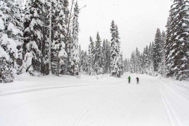 Two people cross country ski while it snows in Smithers BC